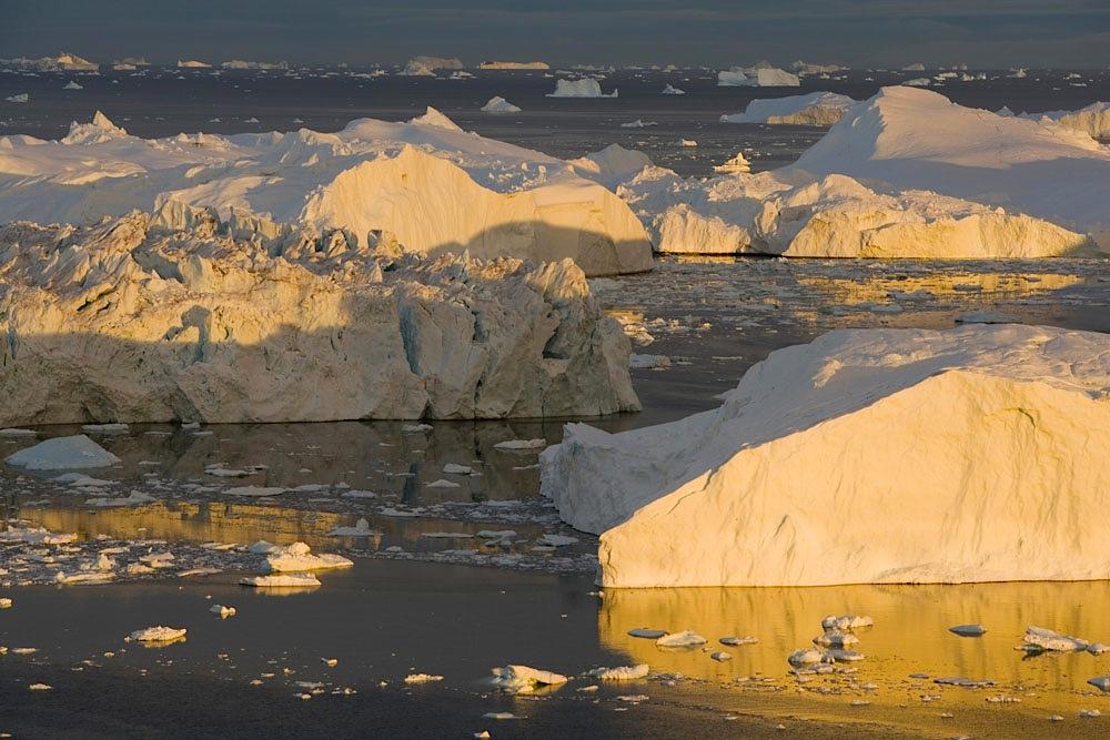 Large icebergs at midnight.