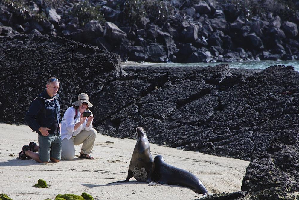 , Galapagos Islands, Ecuador