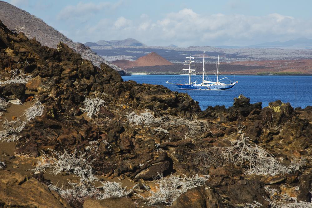 Sailboat in Sullivan Bay