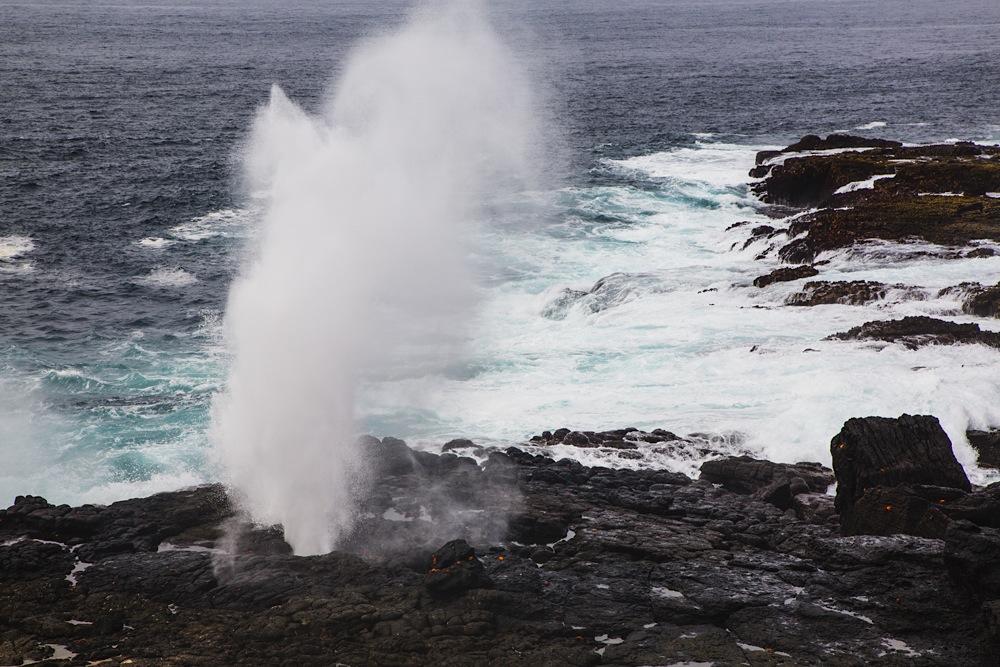 Blowhole or sea spout in volanic rocks along shore of Espanola Island, Galapagos