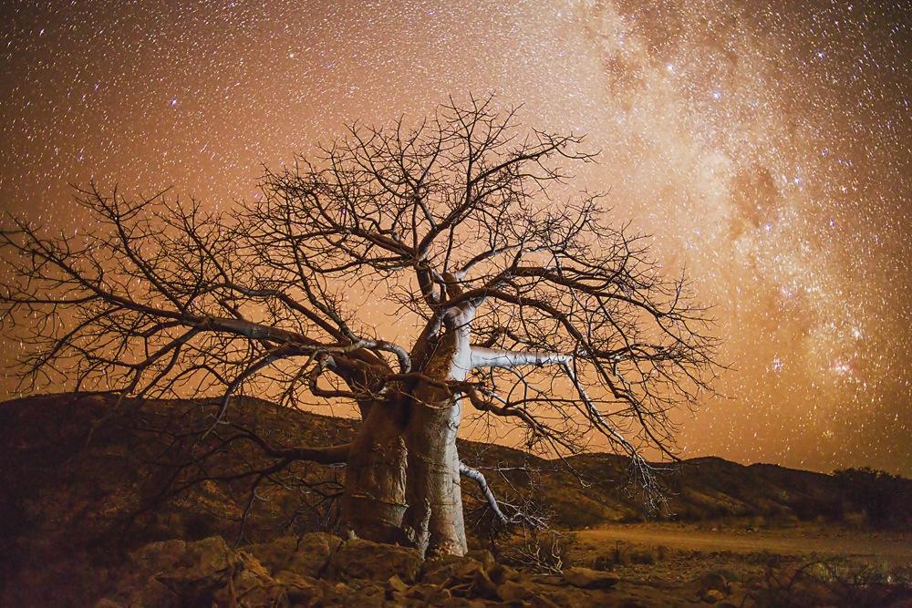Tarris_Namibia_04_2014_1019