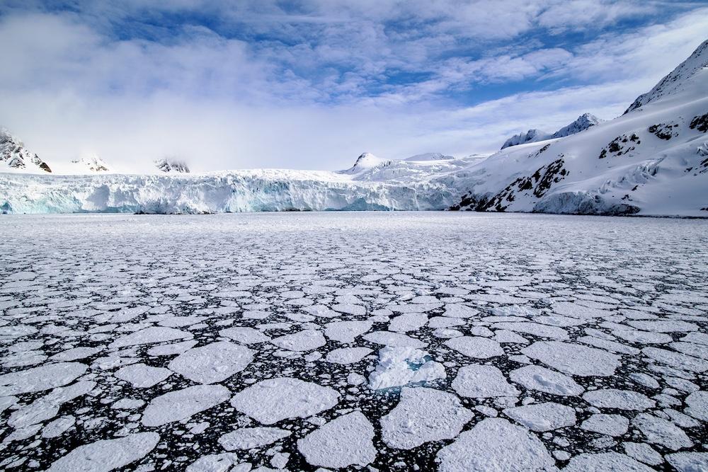 Tarris_SvalbardArctica_06_2016_0671 copy