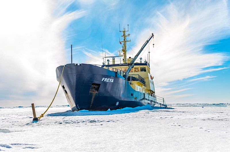 2. MS Freya moored in pack ice